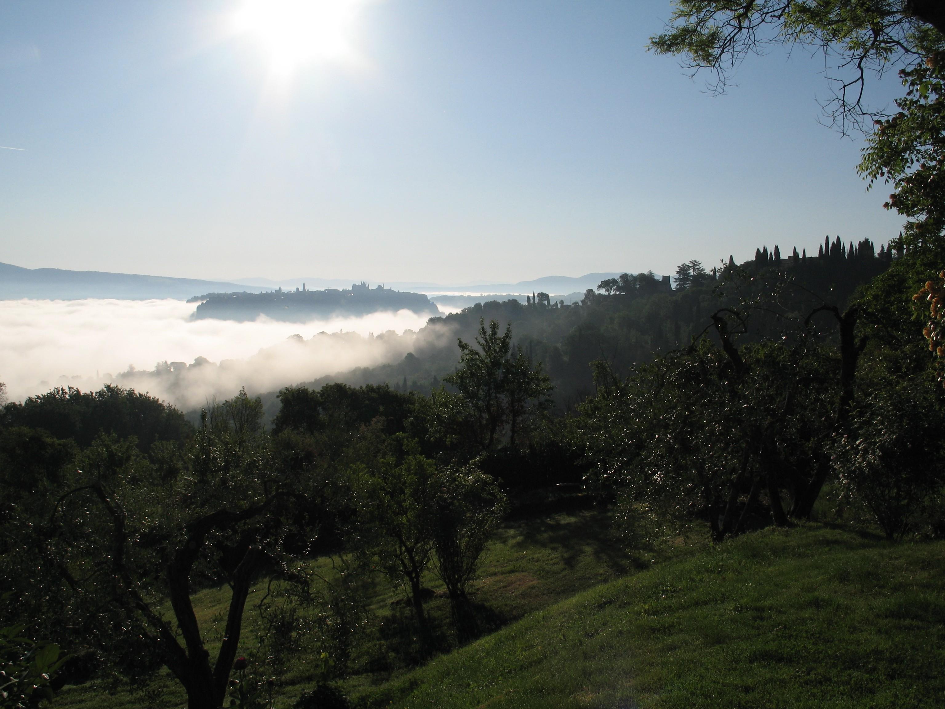 Morgenudsigt  til Orvieto
