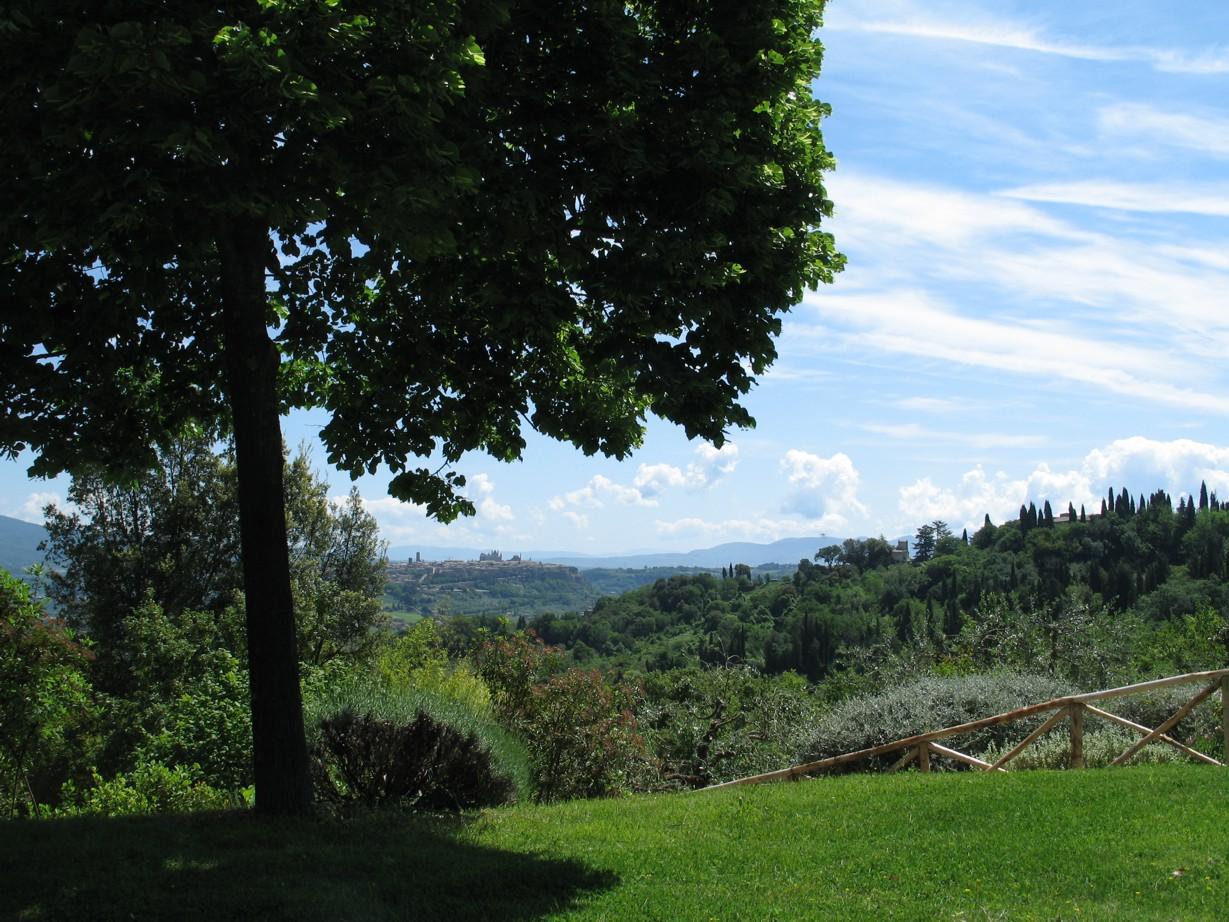 Udsigten til Orvieto